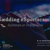 eSportscamp Sædding